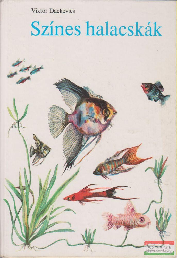 Színes halacskák