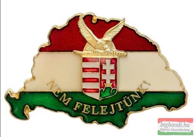 Kitűző - Nagy Magyarország, turulos címerrel
