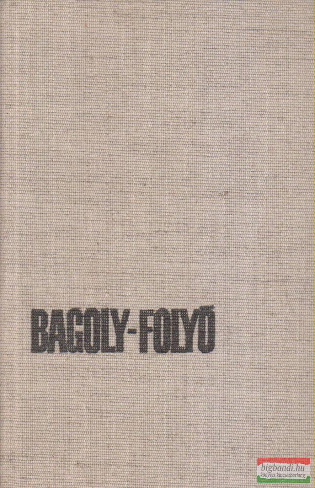 Bagoly-folyó
