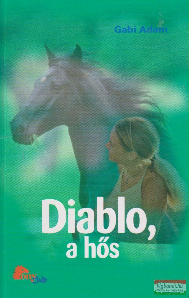Gabi Adam - Diablo, a hős