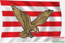 Árpád-sávos zászló Turul madárral 60x40 cm-es