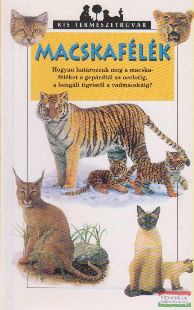 Macskafélék
