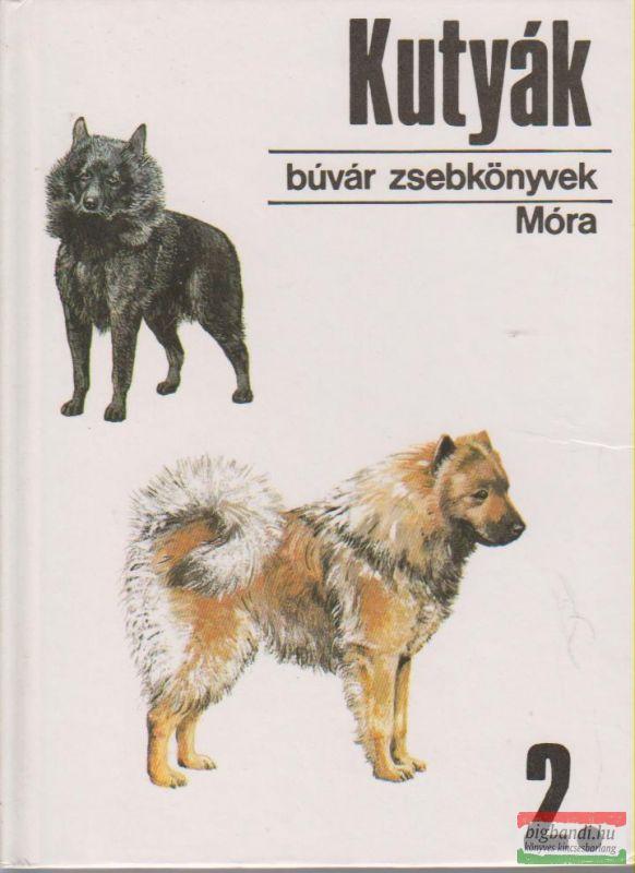 Kutyák 2.