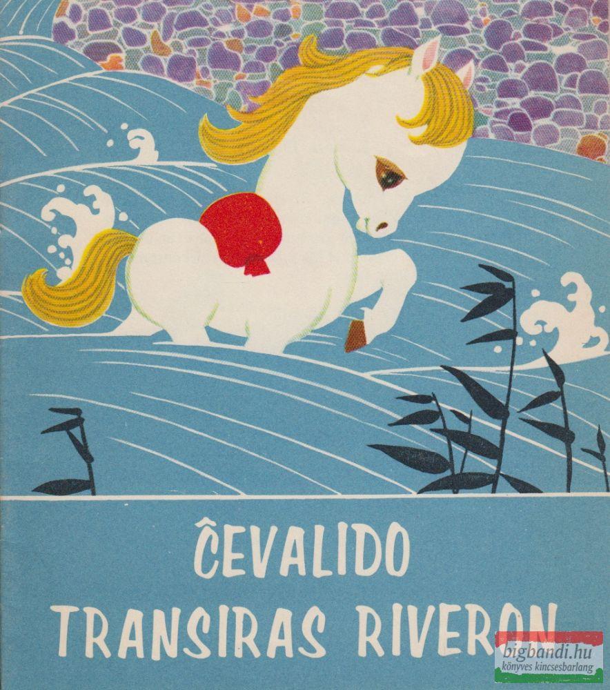 Cevalido Transiras Riveron