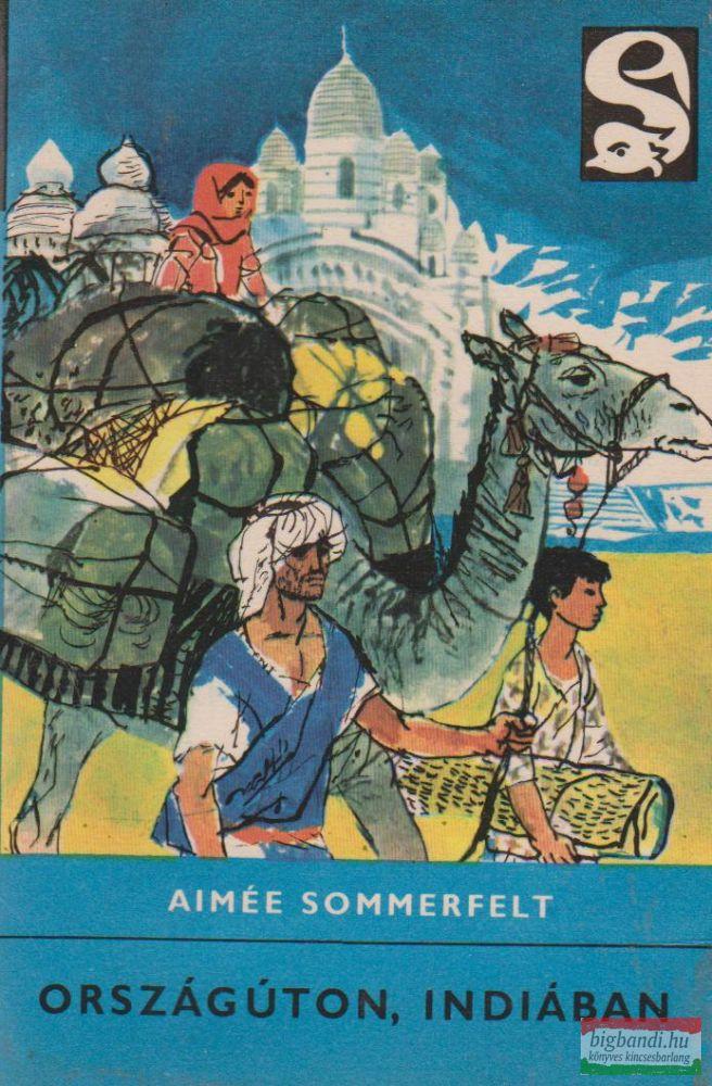 Országúton, Indiában (delfin könyvek)