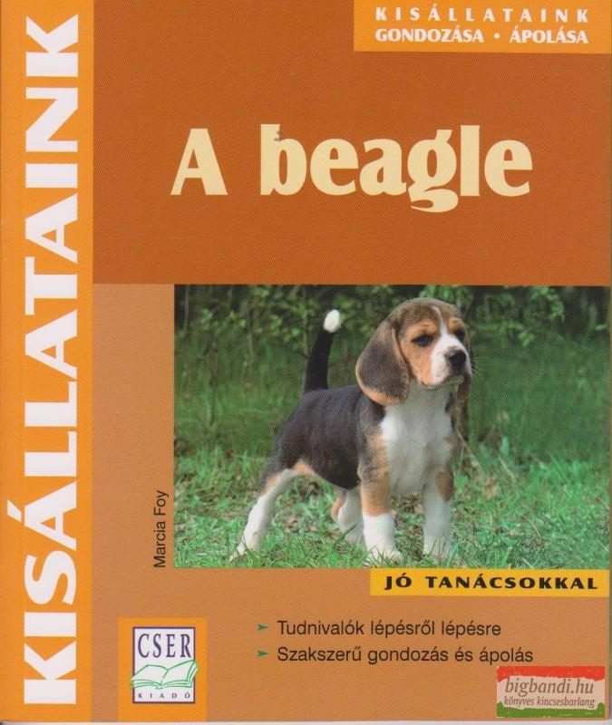 Marcia Foy - A beagle