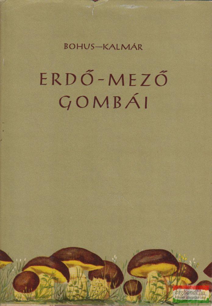 Erdő-mező gombái