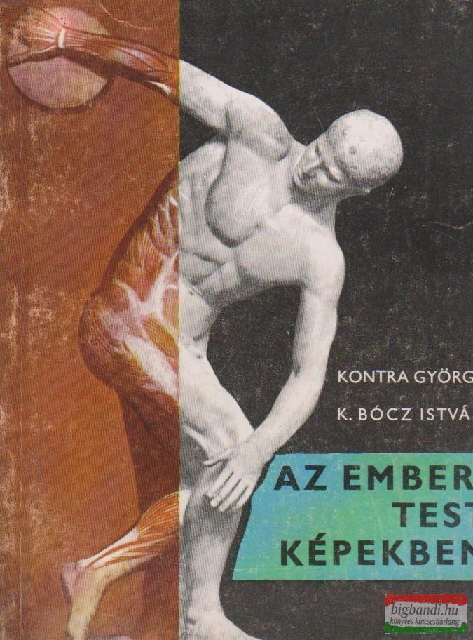 Az emberi test képekben