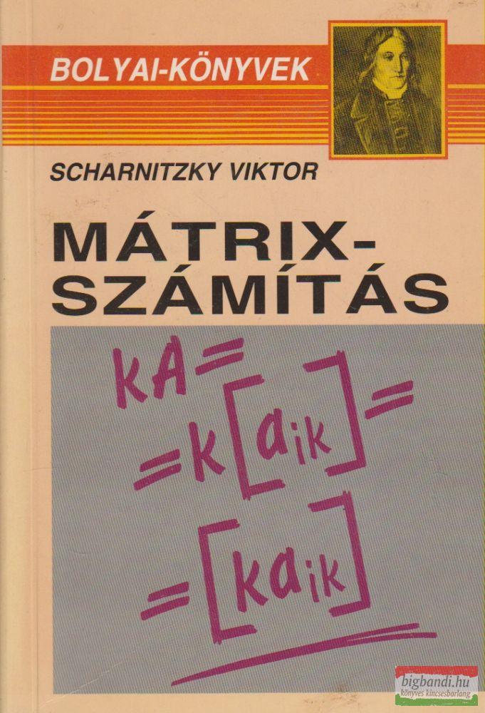 Scharnitzky Viktor - Mátrixszámítás