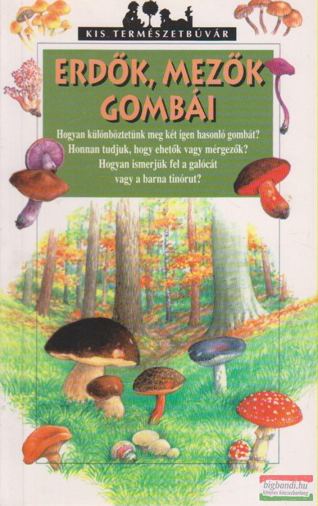 Erdők, mezők gombái