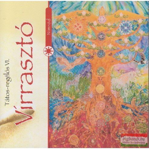 Nimród együttes / Sólyomfi Nagy Zoltán - Virrasztó CD
