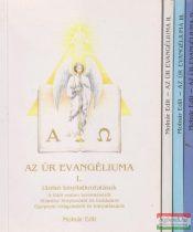 Molnár Edit - Az Úr Evangéliuma I-IV.