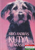 Bíró András - Kutya a lakásban