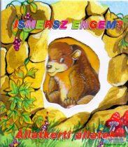 Radvány Zsuzsa - Ismersz engem? - Állatkerti állatok