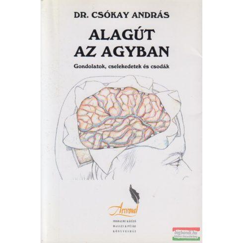 Dr. Csókay András - Alagút az agyban