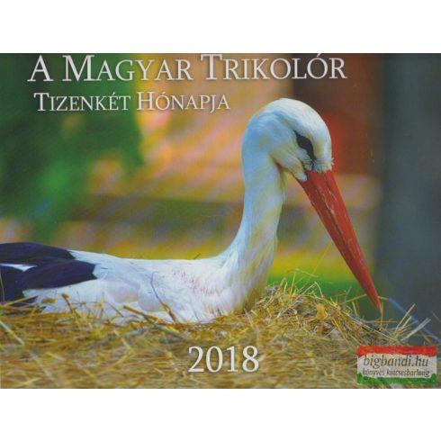 A Magyar Trikolór Tizenkét Hónapja 2018 - A Nemzet Naptára