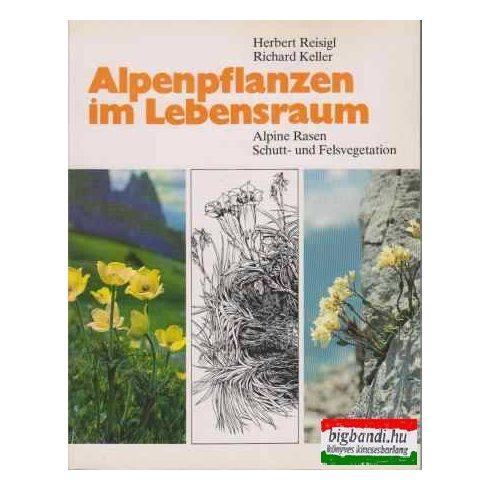 Alpenpflanzen im Lebensraum