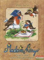 Pósa bácsi - Madaras könyv - Négy évszak madárversei gyerekeknek