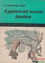 Dr. Jeszenszky Árpád - A gyümölcsfák metszése képekben