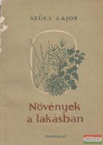 Szűcs Lajos - Növények a lakásban