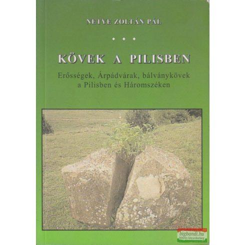 Netye Zoltán Pál - Kövek a Pilisben - Erősségek, Árpádvárak,bálványkövek a Pilisben és Háromszéken