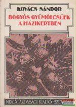 Kovács Sándor - Bogyós gyümölcsűek a házikertben