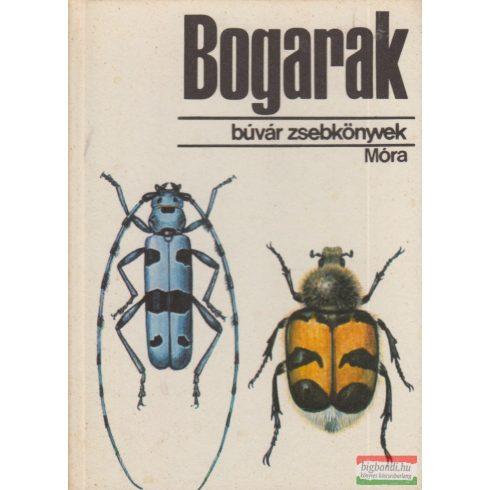 Dr. Endrődi Sebő - Bogarak