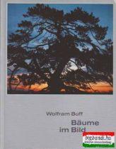 Baume im Bild - Leben und Schönheit unserer Baume
