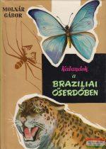 Kalandok a Brazíliai őserdőben