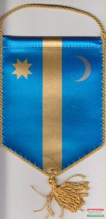 Székely autós zászló