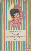 Mezey Katalin - Lyukak az osztálykönyvben