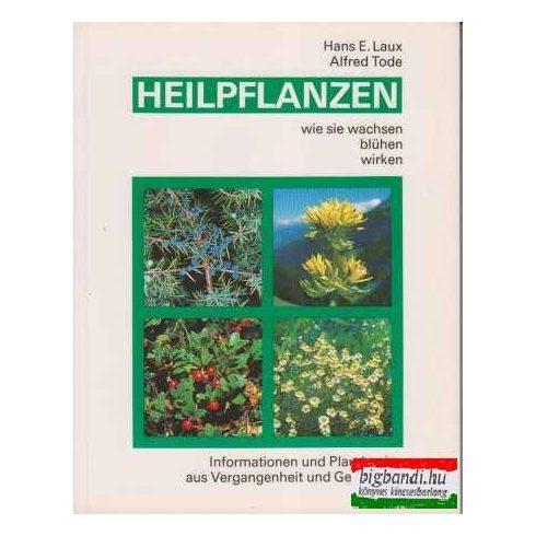 Heilpflanzen - wie sie wachsen, blühen, wirken