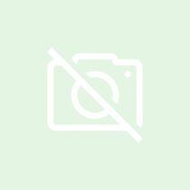 Kiss Benedek - Korong Matyi álma