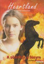 Lauren Brooke - A sötétből a fényre - Heartland 7.