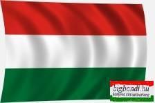 Magyar zászló 60x40 cm