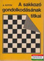 A sakkozó gondolkodásának titkai