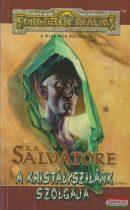 R. A. Salvatore - A kristályszilánk szolgája