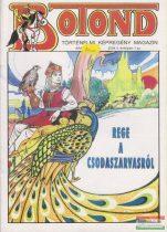 Botond - történelmi képregény magazin 2004. 1. szám