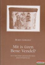 Born Gergely - Mit is üzen Bene Vendel?