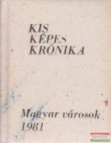 Antal Károly, Gerencséri Jenő - Kis Képes Krónika - Magyar városok 1981. (minikönyv)