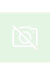 Julius Evola - A felébredés doktrínája - Tanulmány a buddhista aszkézisről