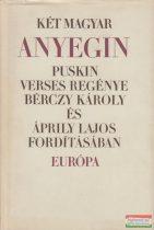 Alekszandr Szergejevics Puskin - Két magyar Anyegin
