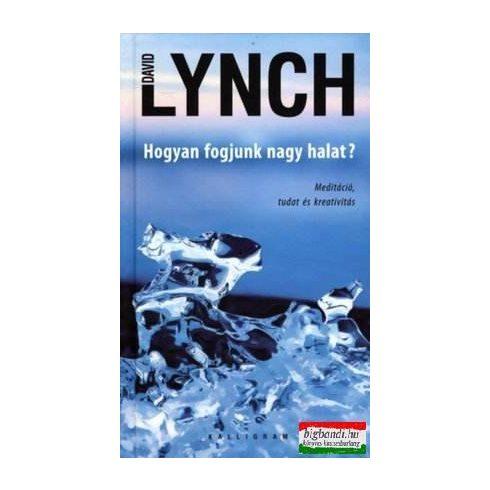 David Lynch - Hogyan fogjunk nagy halat?