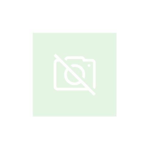 Esztergomi oroszlán - póló - fekete színben