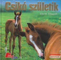 Elin M. Ellingsen - Csikó születik