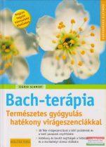 Sigrid Schmidt - Bach-terápia