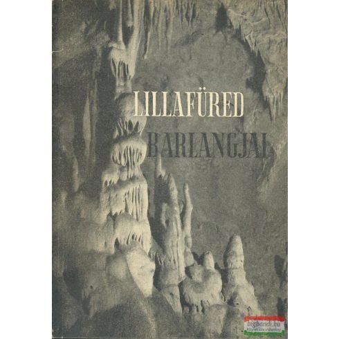 Kessler Hubert - Megay Géza - Lillafüred barlangjai