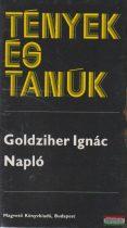 Goldziher Ignác - Napló