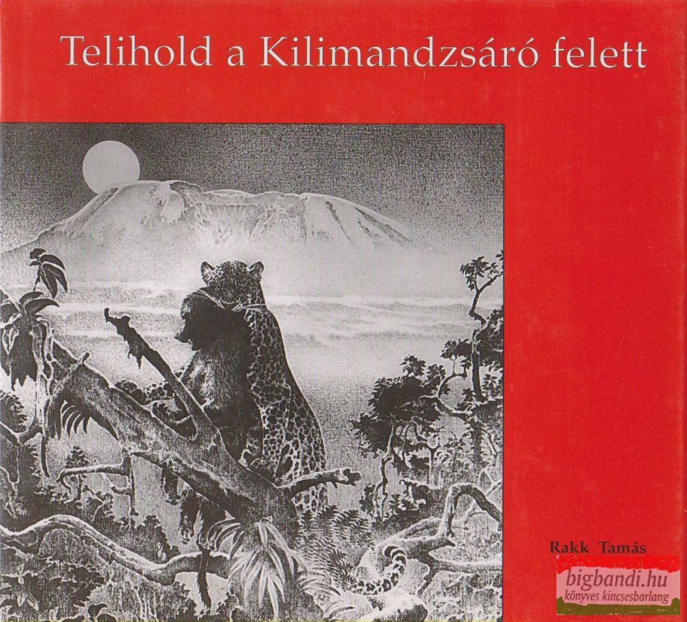 Telihold a Kilimandzsáró felett