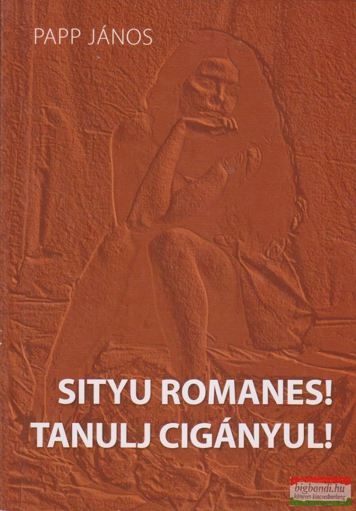 Tanulj cigányul! / Sityu romanes!